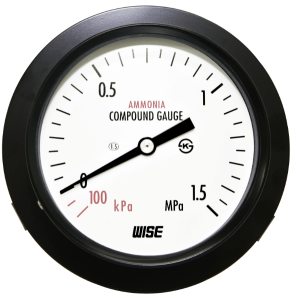 Đồng hồ áp suất Wise P111 - 1