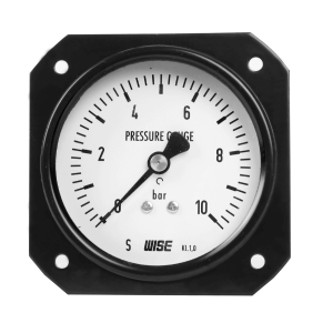 Đồng hồ áp suất P163 - 3