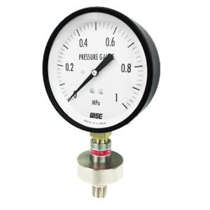Đồng hồ áp suất P170 - 3
