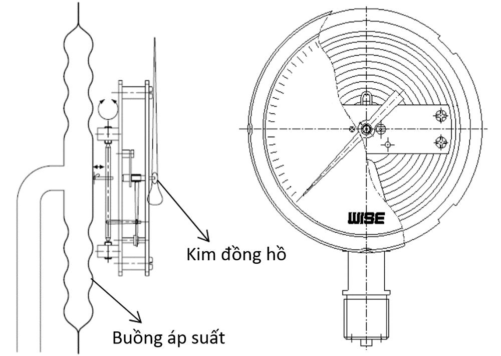 Đồng hồ áp suất P421 - 3