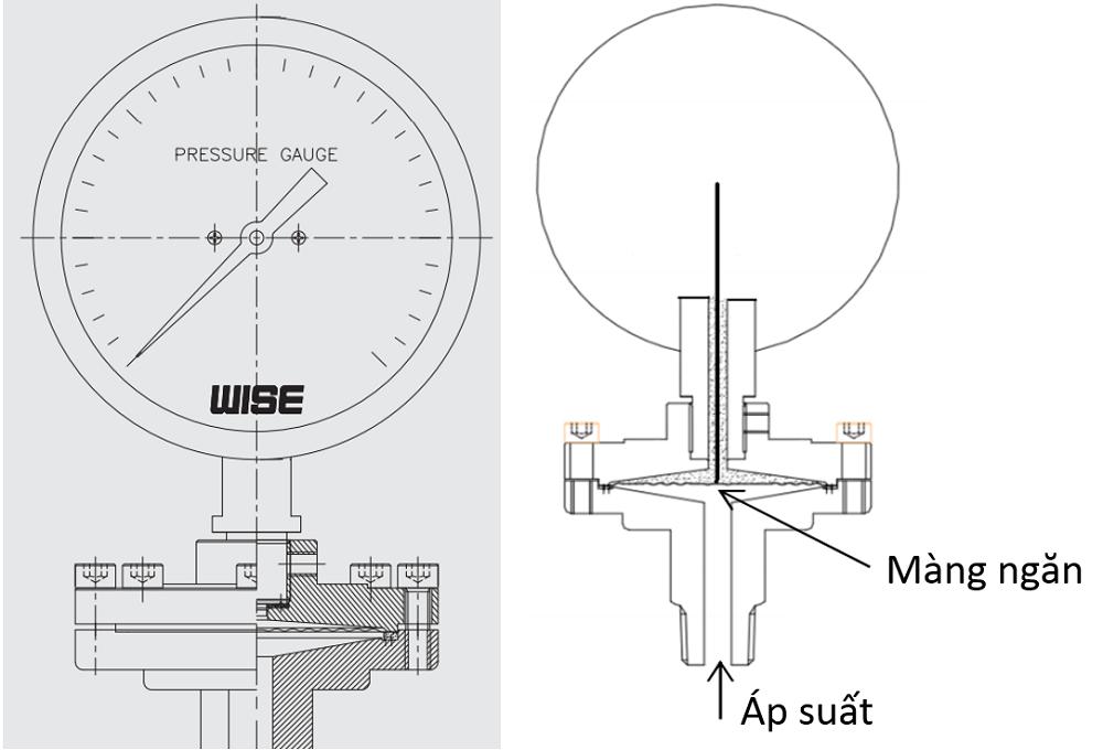 Đồng hồ áp suất P429 -2