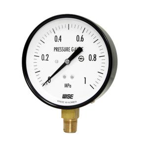 Đồng hồ áp suất Wise P110 - 1